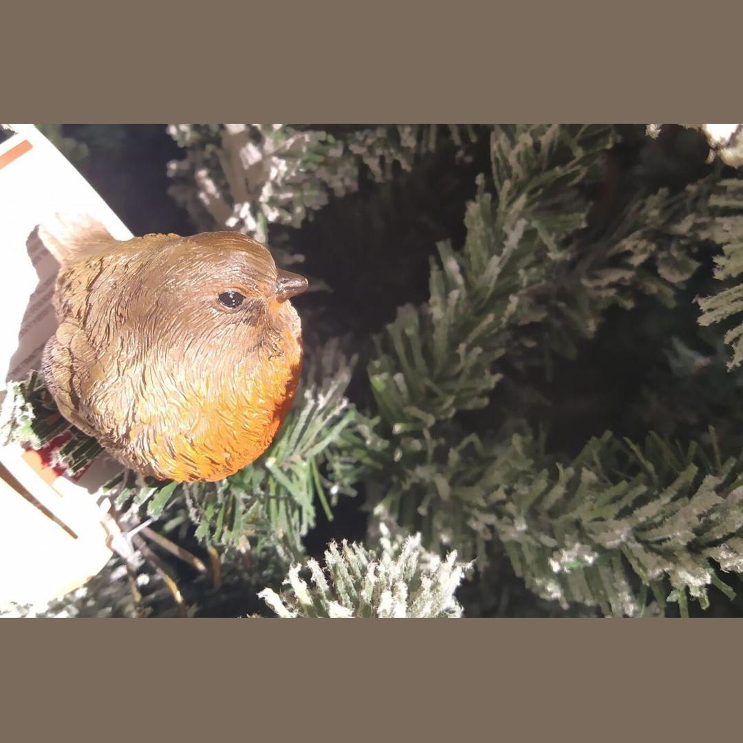 Christmas decoration Robin