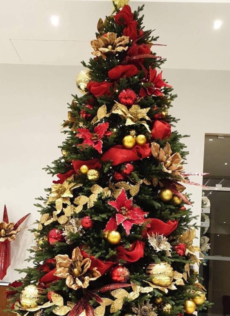 Christmas trees in all sizes and colours